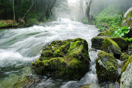 Eau potable, eaux usées et eau pluviale
